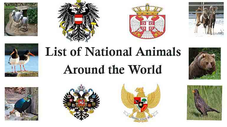 list-of-national-animals